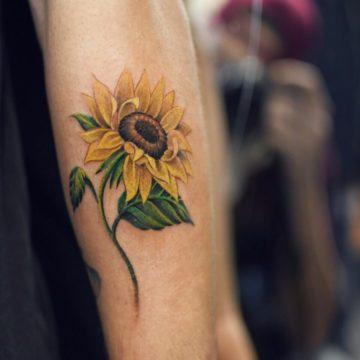 פרח 3